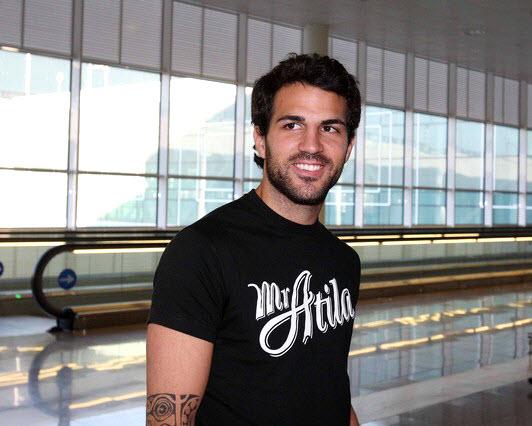 بیوگرافی سسک فابرگاس - Cesc Fàbregas